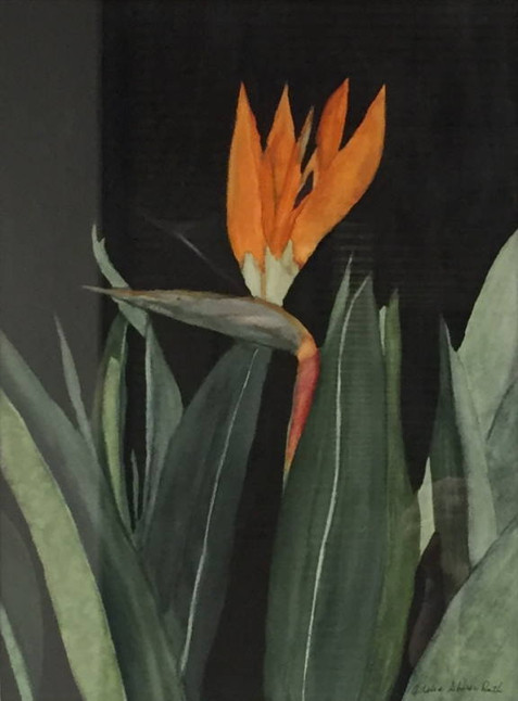 BB&T Bank on Art - March 2020: Adelia Shirer Ruth