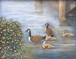 Lake Murray Family