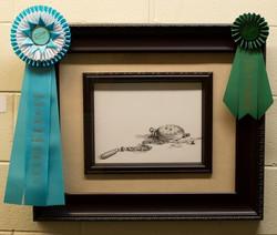 Moyer Memorial Award-Professional
