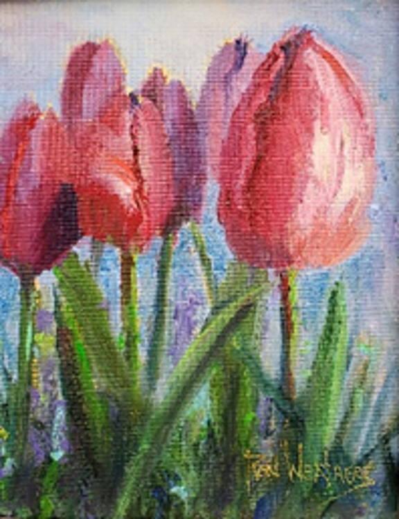 """""""New Tulips"""""""