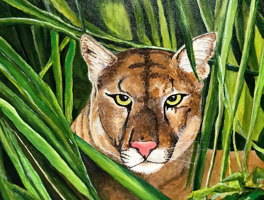 """Through the Glades - A Florida Panther"", Painting by CJ Martin-Marchese"