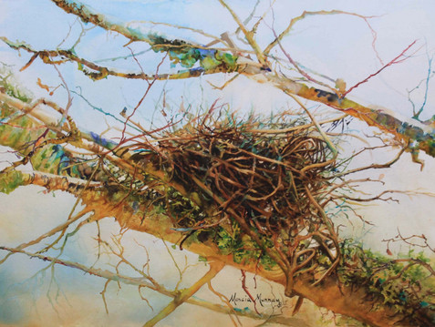CCAL Artist at Artfields - Marcia Murray