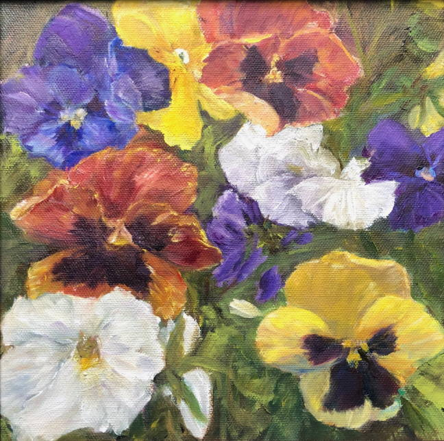 Pansy Patch