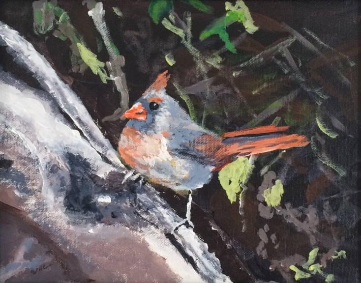 Mama Red Bird