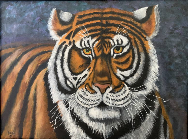 """Tiger Eyes"""