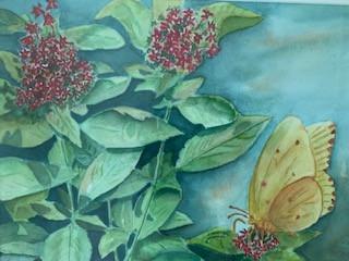 Blue Lavender Gallery - Sept 2021: Pat Murphy