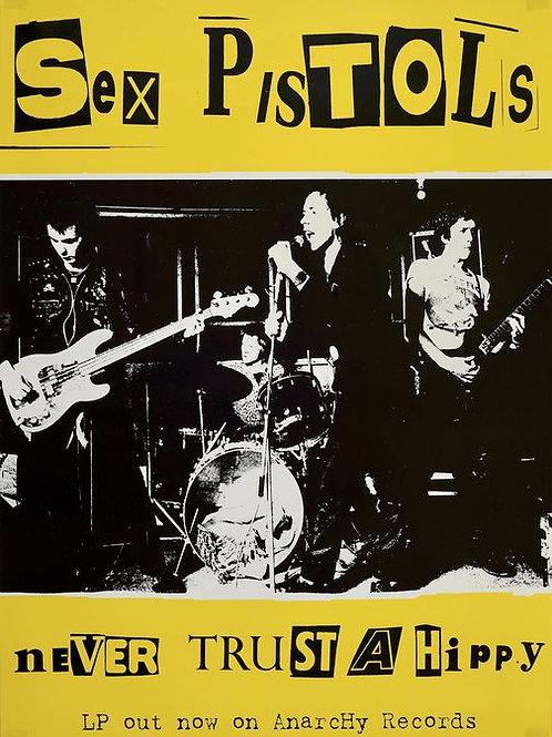 Sex Pistols Never Trust A Hippy 1