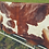 Thumbnail: Cowboy Brown and White Beautiful authentic African cattle hides.