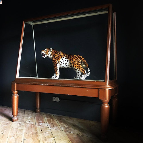 Large Display Case, Bronze, Museum Quality, Showcase