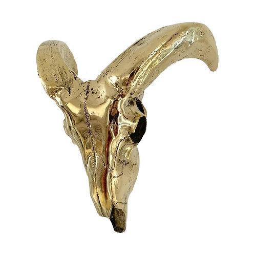 Brass cast Goat Skull wall hung Capra hircus 1