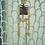 Mapoletan Skeleton Puppet full 3