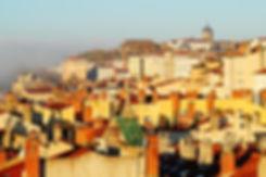 Visite guidée des pentes de la Croix-Rousse Lyon