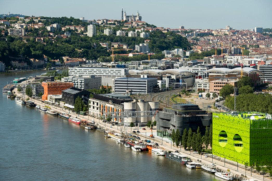 confluence visite guidée Lyon