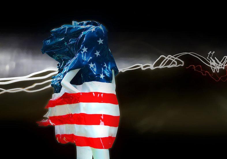 Flag Walking by Cecil W. Lee / USA