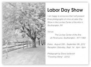 """""""Labor Day Show 2012″ at the Levitas Center of the Arts, Southampton NY"""