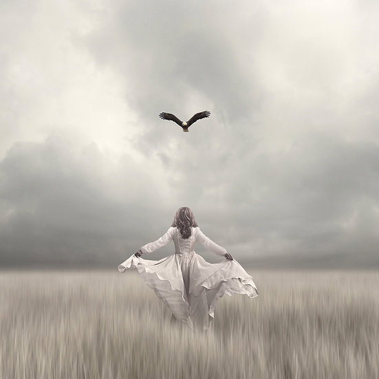 Teach Me How To Fly by Philip McKay