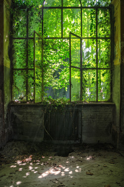 15-La fenêtre