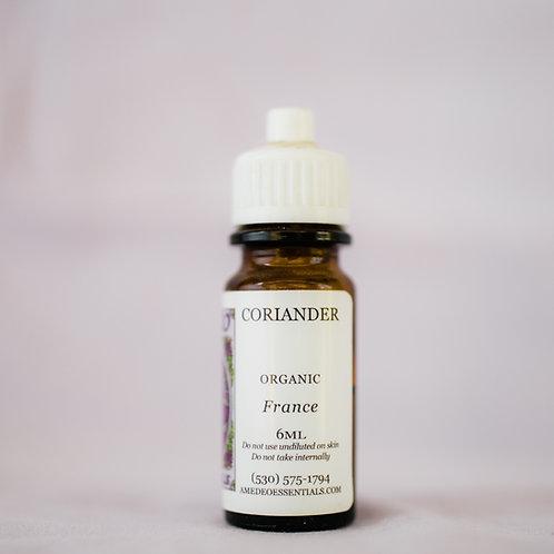 Coriander (Organic)