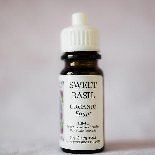 Basil, Sweet (Organic)