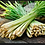 Thumbnail: Lemongrass (Organic)