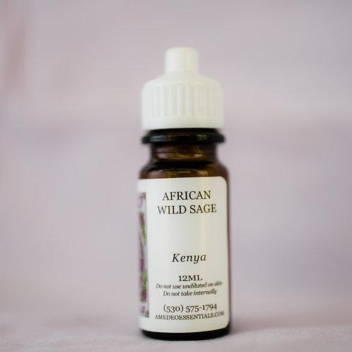 Sage, African  (Wild)