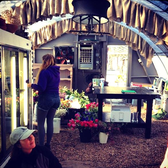 Love it when a plan starts to come together! #sneedsnursery #organics #flowergirlsrva #rva #rvaart #