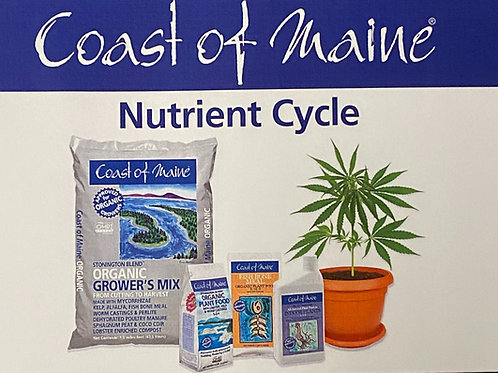 Coast of Maine-Cannabis-Nutrient Cycle for Soil Brochure
