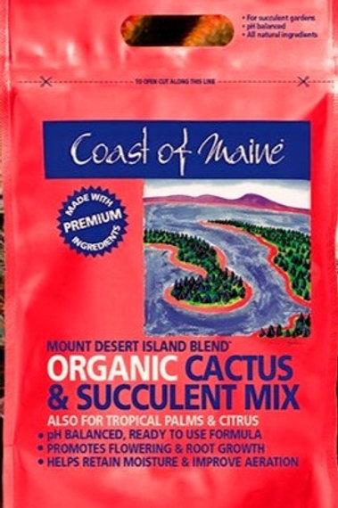 8qt Mount Desert Island...Cactus & Succulent Mix