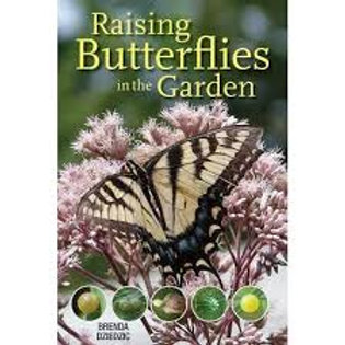 'Raising Butterflies in the Garden' book