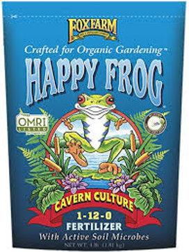 Happy Frog Cavern Culture
