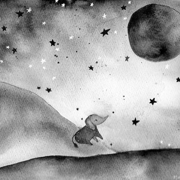 Elephant & Moon