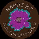 Nandi Re-04.png