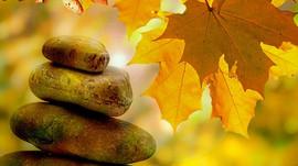 Trouver son havre de paix intérieur