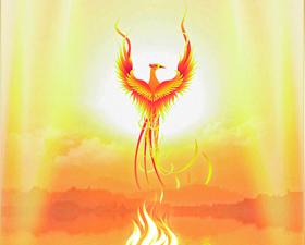 Tel un Phoenix...