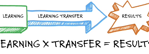 Interview with Roy Pollock on learning transfer