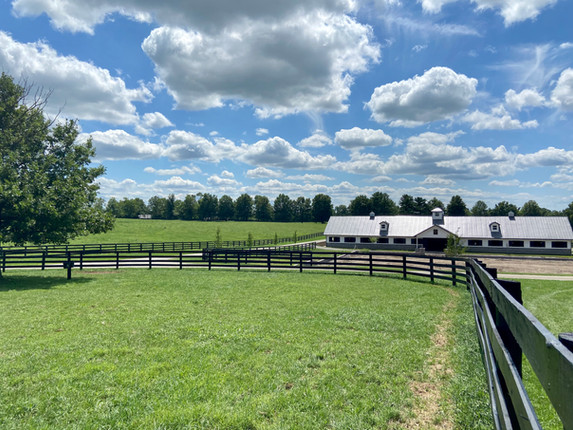 View of the barn from the paddocks
