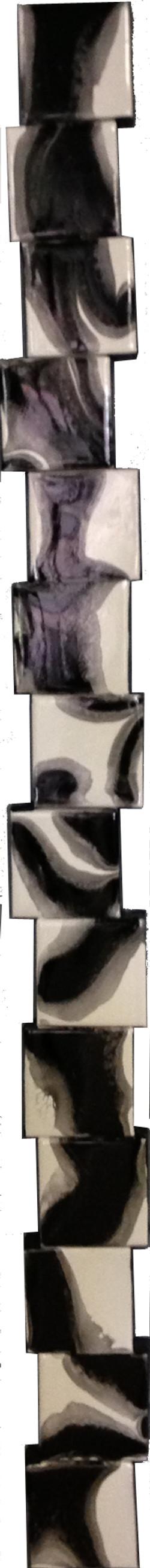 Zebraica.5.6x60.285 copy