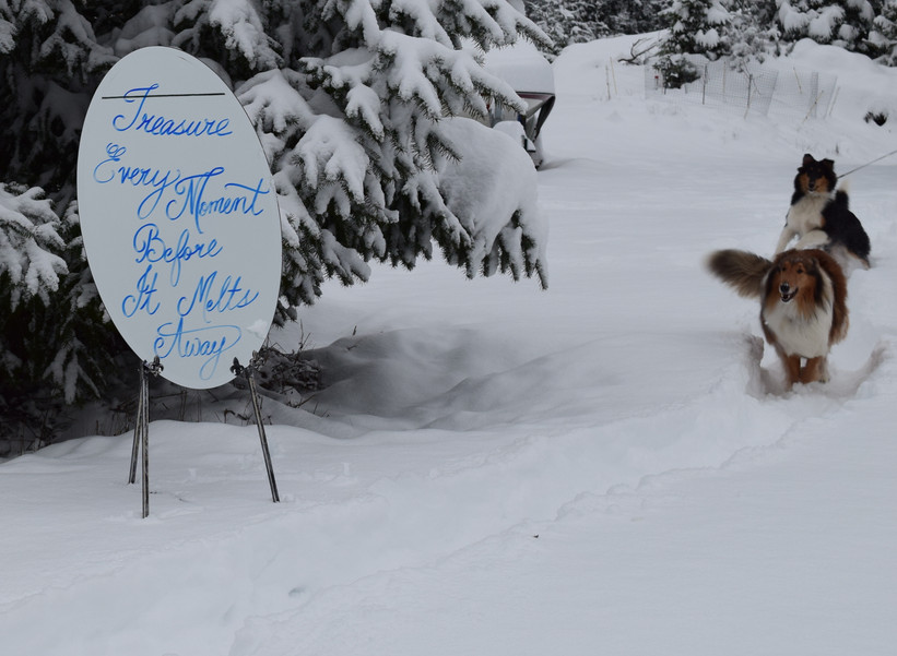 Snow Mirror