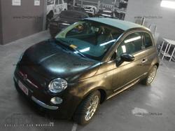 2012-01_Fiat 500_Croco Bronze_by DmDArts_36.JPG