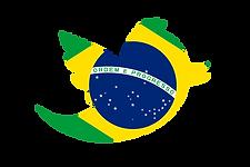 BRAZIL CHICEN MANUFACTURERS