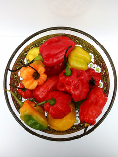 chillies in bowl#1.jpg