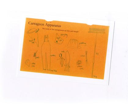 Carrageen Apparatus