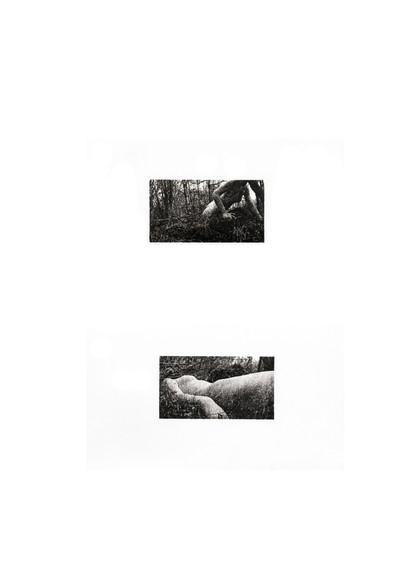 body/landscape