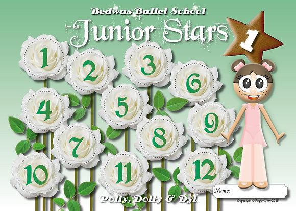 A pack of Five Junior Star Reward Cards