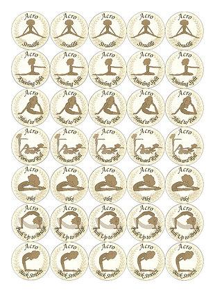 Acro Junior Skills Stickers