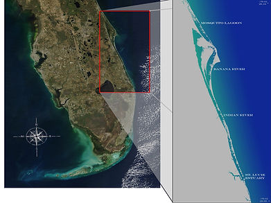 Florida and the Indian River Lagoon system