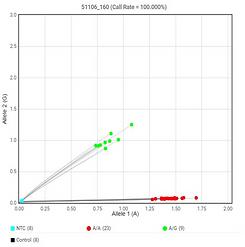 SNP haplotype profile