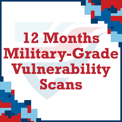 12 Months Vulnerability Scans