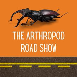 Arthropod Road SHow-ORANG.png