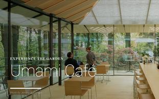Field Trip Friday: Umami Cafe